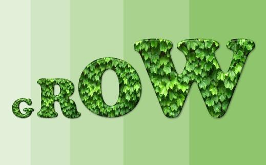 visual-grow